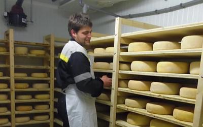 Rémi Moncaubeig – Elevage de vaches laitières